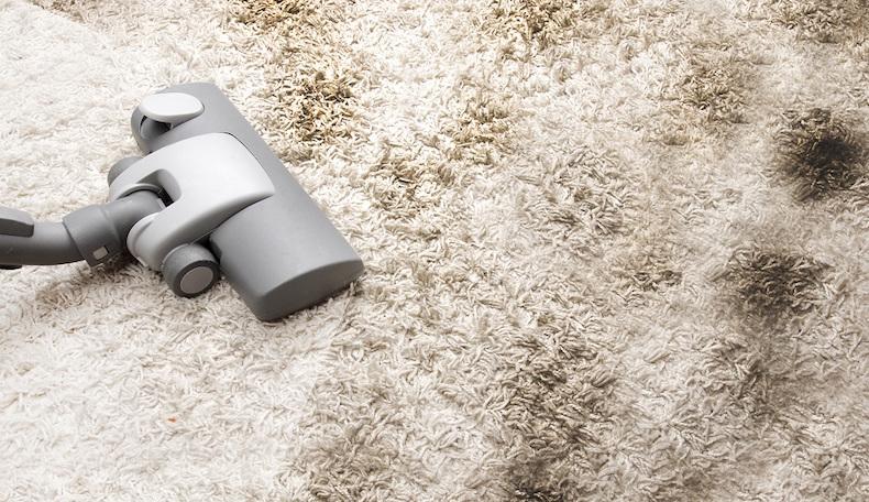 Как почистить палас в домашних условиях от сложных пятен