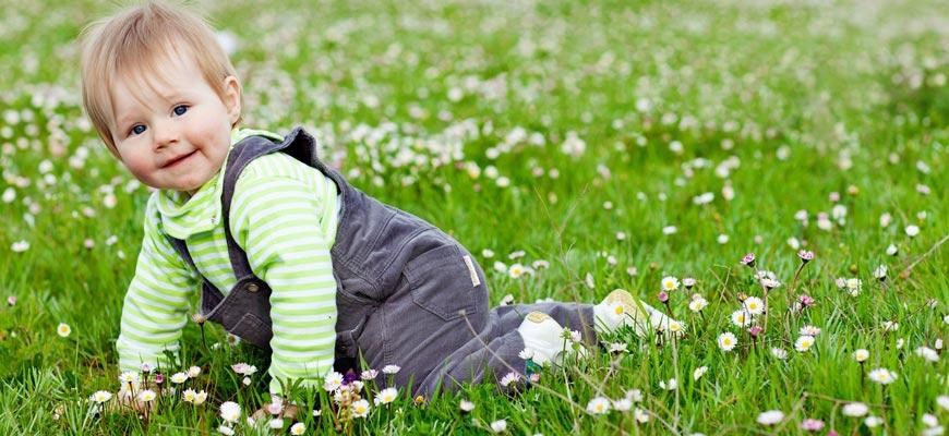 трава-на-одежде